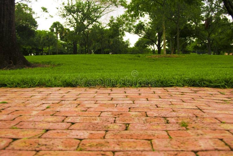 Park-Perspektive stockfotos