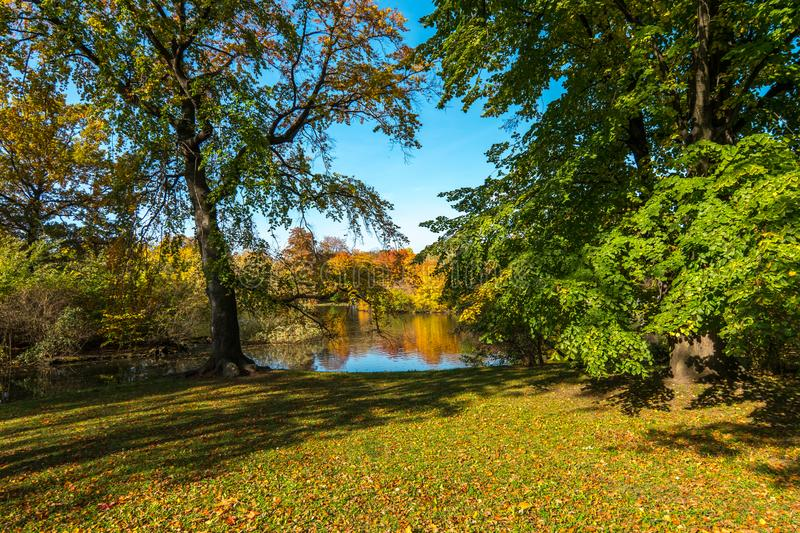 Park with a pond in autumn colors royalty free stock photos