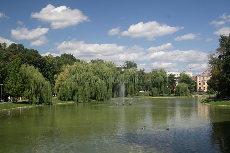 Park on a pond in Kielce, Poland. Beautiful park in the town of Kielce in Poland with a pond in summer royalty free stock images