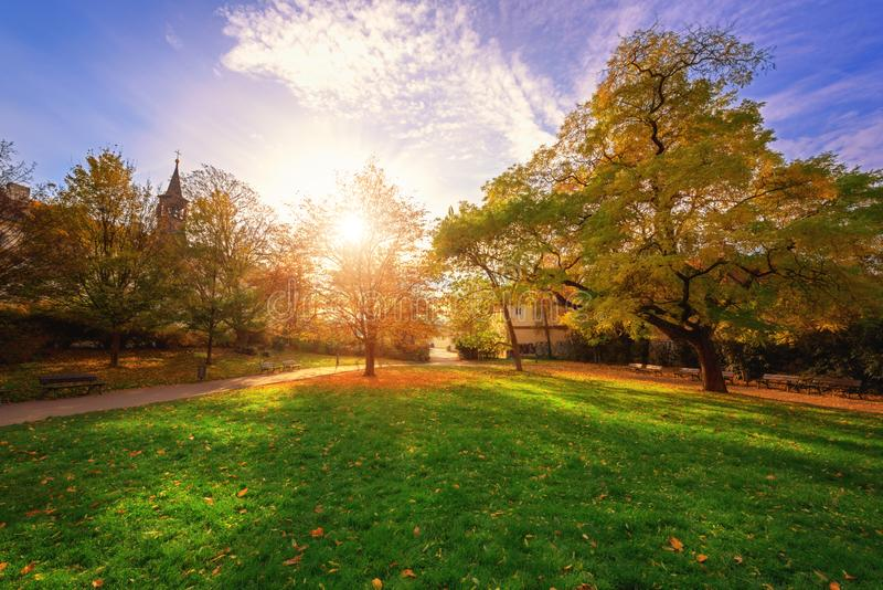 Park in Prague near the Castle Hill, sunny autumn landscape with green grass, yellow trees and blue sky, Prague, Czech Republic royalty free stock photo