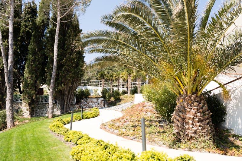 park przed hotelowym kurortem, Chorwacja obraz royalty free