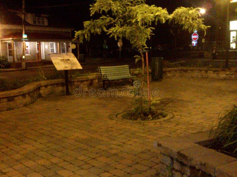 Park przy nocą fotografia stock