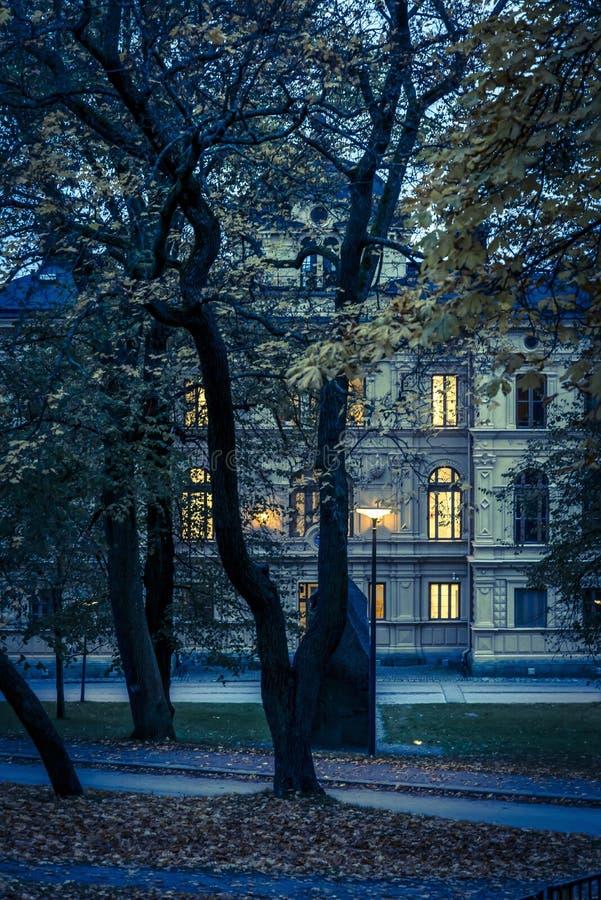Park przy nocą, Skeppsholmen wyspa, Sztokholm obraz royalty free
