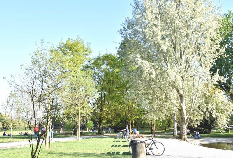 Park przy pierwszy wiosny słońcem obraz stock