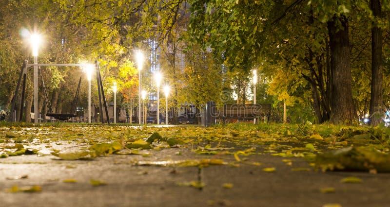 Park after rain at autumn. background. Park after rain at autumn night. background royalty free stock photography