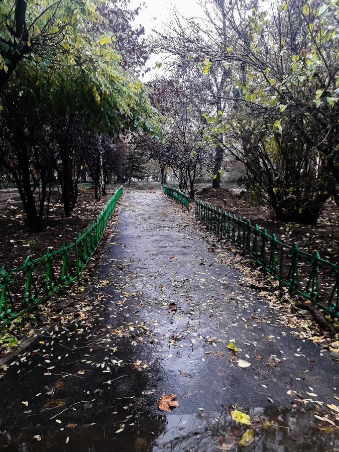 Park on a rainy day in Bucharest, Romania, 2019.  stock photo