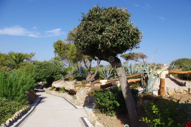 Park Rhodes Greece royalty-vrije stock afbeeldingen