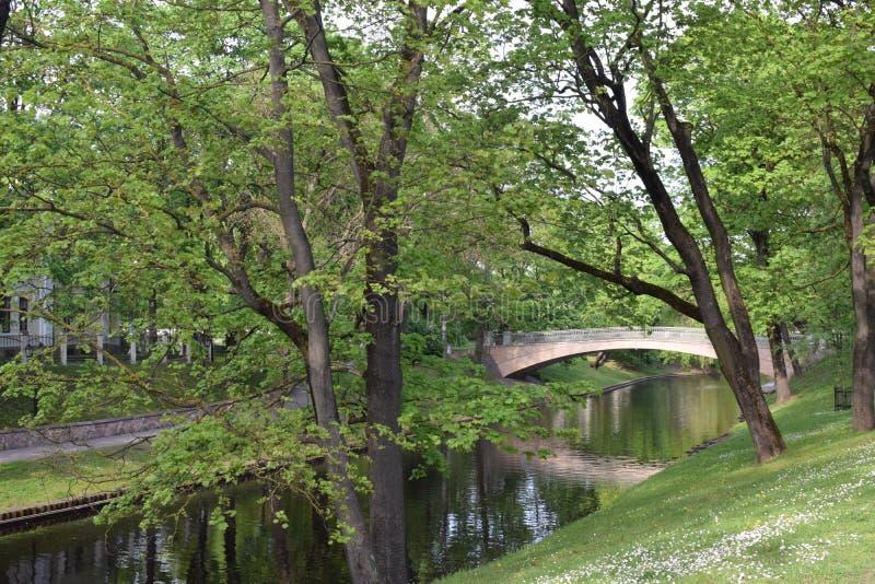 Park in Riga, Letland royalty-vrije stock fotografie