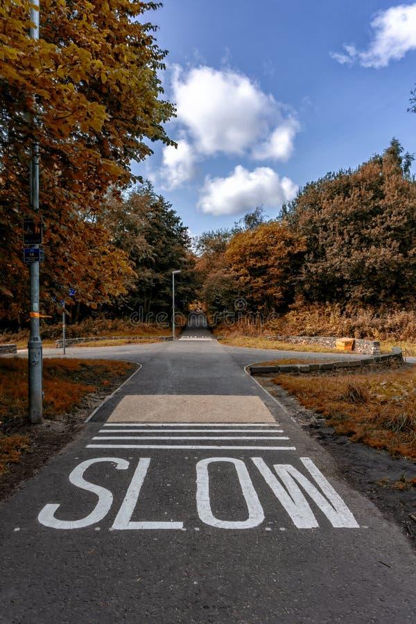Park Road in Edinburgh city, Scotland Uk, Traveling in Europe. Park Road in Edinburgh city, Scotland Uk Traveling in Europe royalty free stock photo