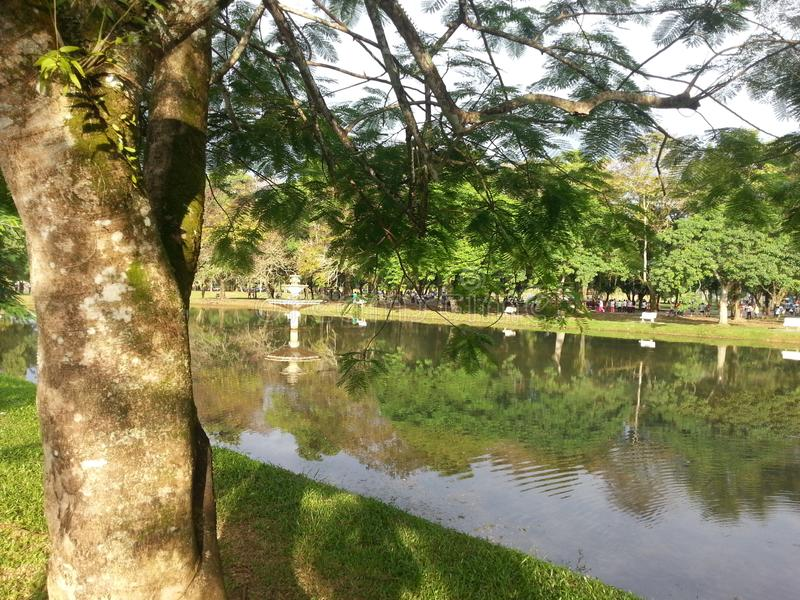 The park& x27;s green meadows by the river. Parks, bye royalty free stock image