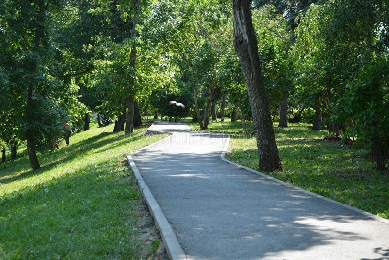 Park Salavat Yulayev stockfotos