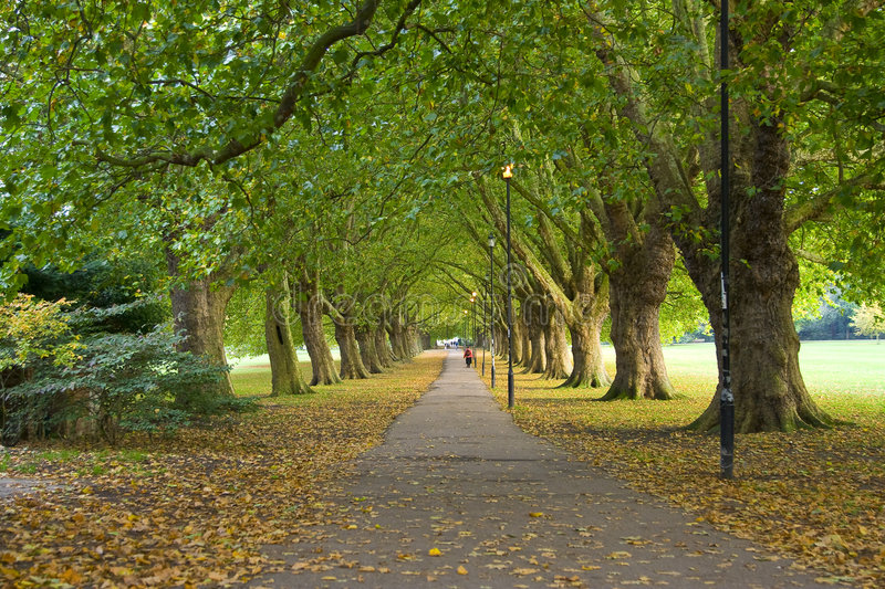 Park Scene from Cambridge, UK royalty free stock images