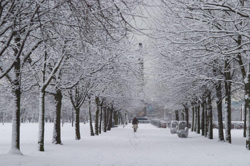 Park-Schnee-Szene lizenzfreie stockfotografie