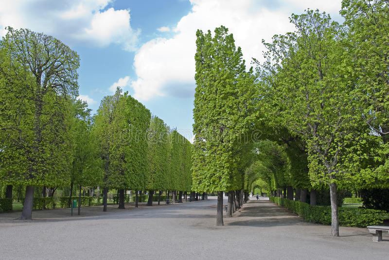 Park Schonbrunn stock image