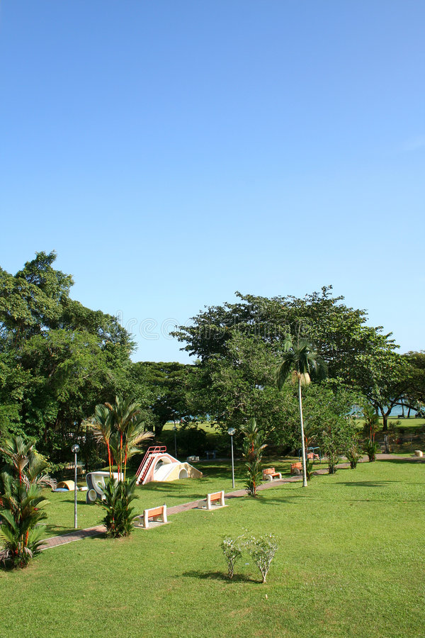 Download Park by seaside stock image. Image of garden, sunny, beach - 7525389