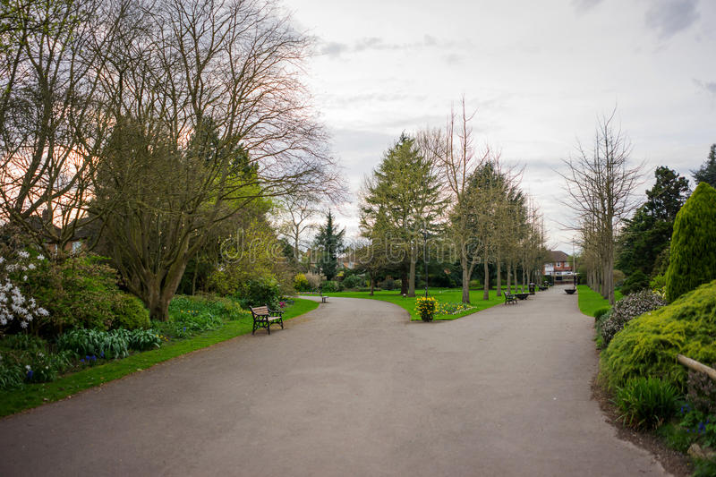 Park setting in spring lush foliage bare trees. Flowers in Springtime rural scene with a pathway in the UK royalty free stock photos