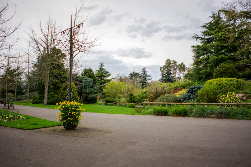 Park setting in spring lush foliage bare trees. Springtime rural scene with a pathway in the UK royalty free stock image