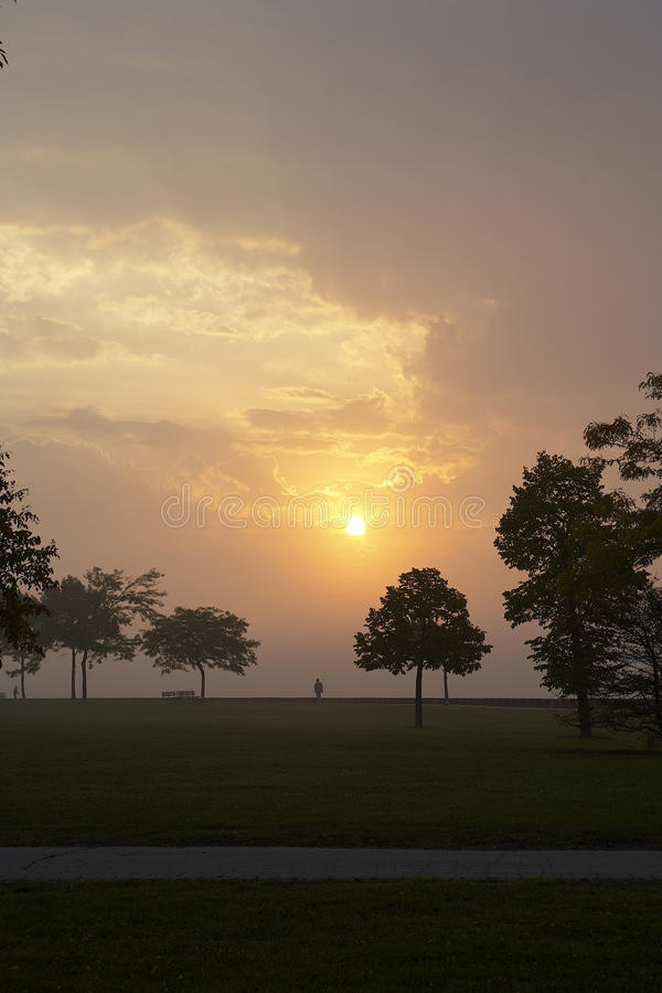 Download Park on shoreline stock image. Image of single, person - 13024467