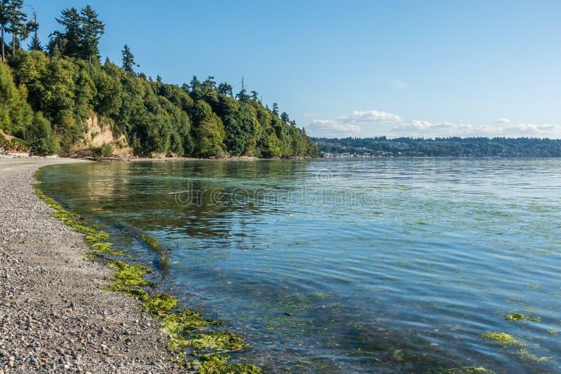 Park Shoreline stock image