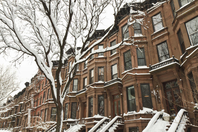 Park Slope Snow royalty free stock photo