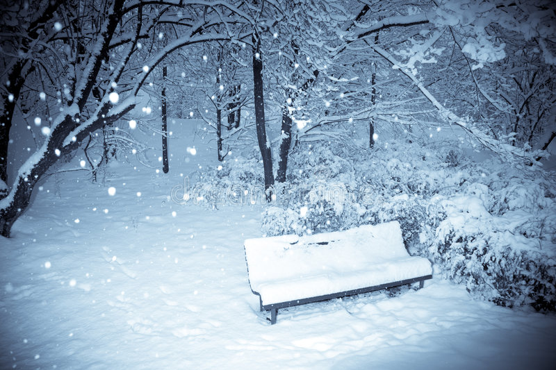Download Park snow stock photo. Image of bench, frost, nature, white - 7654132