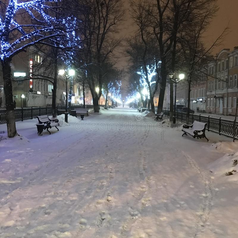 Park in the snow. royalty free stock photography