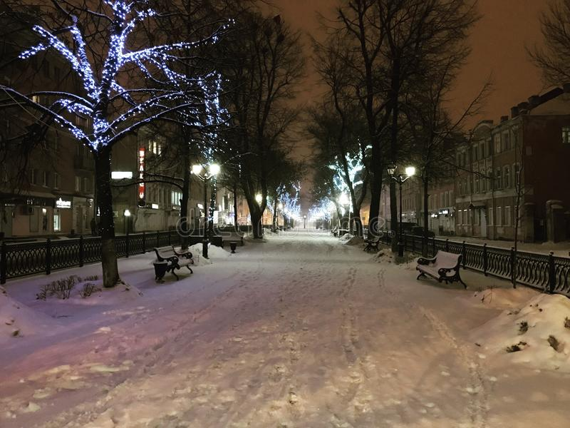 Park in the snow. royalty free stock image