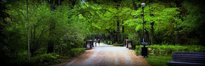 Download Park Sofievka Czasu Ukraine Uman Wiosny Zdjęcie Stock - Obraz złożonej z botaniczny, jaskrawy: 53790778