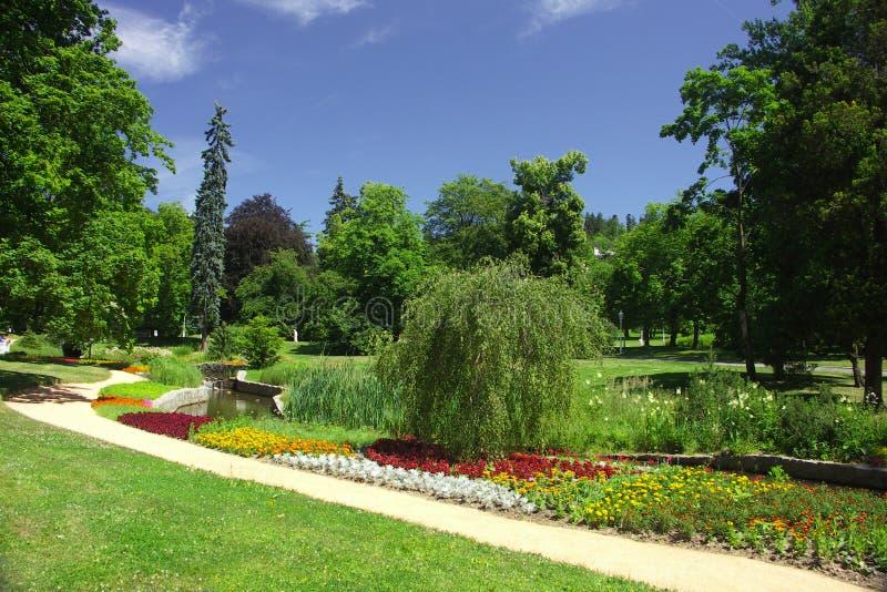 Park am Sommer stockfoto