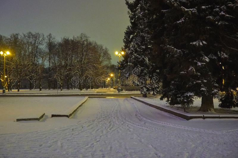 Park on Sparrow hills in winter at night. Park in Sparrow hills in winter at night stock images