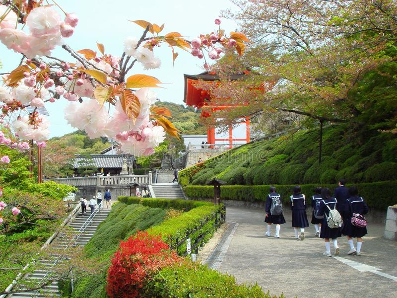 Park in springtime in Kyoto stock images