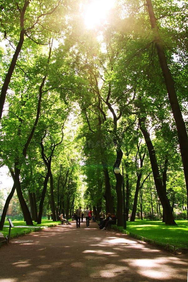 Download Park in St. Petersburg stock photo. Image of summer, petersburg - 26034646