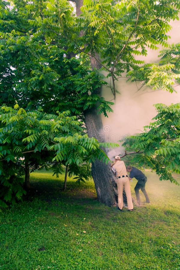 Park staff extinguish steaming wood. the trunk is burning inside stock photos
