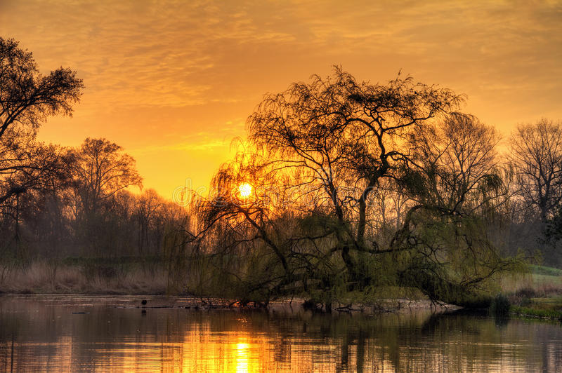 Park sunrise. Beautiful sunrise in the Vondelpark in Amsterdam, the Netherlands. HDR royalty free stock photography