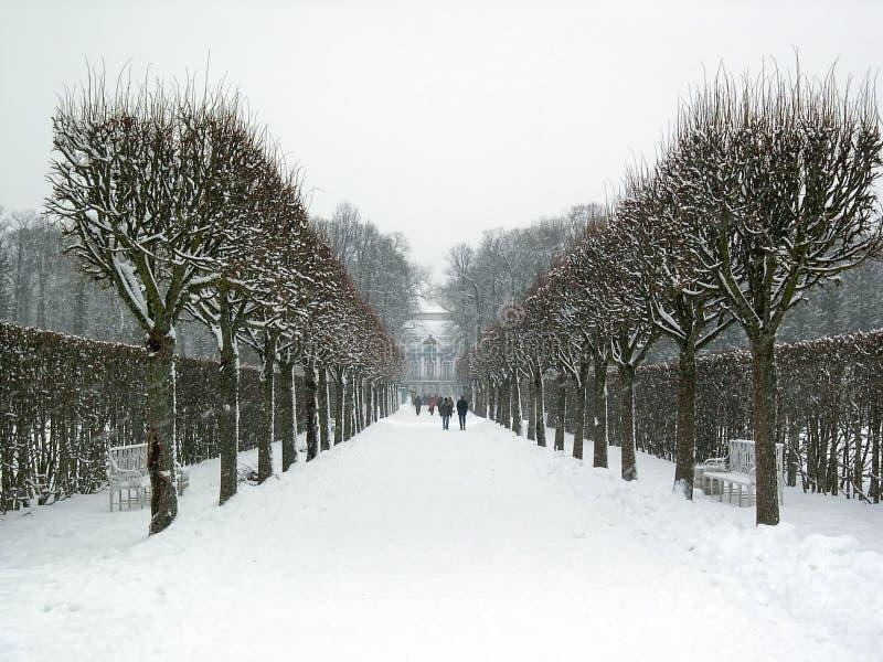 The park surrounding the Catherine Palace, in Tsarskoye Selo Pushkin, Saint Petersburg, Russia, in wintertime.  stock images