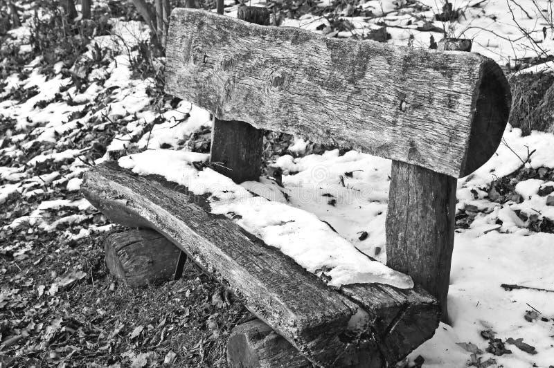 Park tar av planet i snow arkivbild