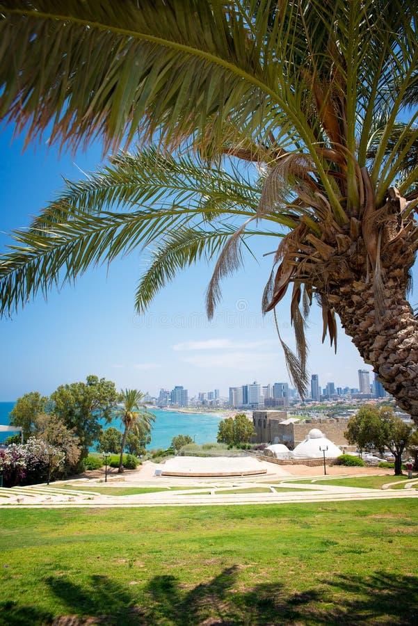 Park in Tel Aviv stock fotografie