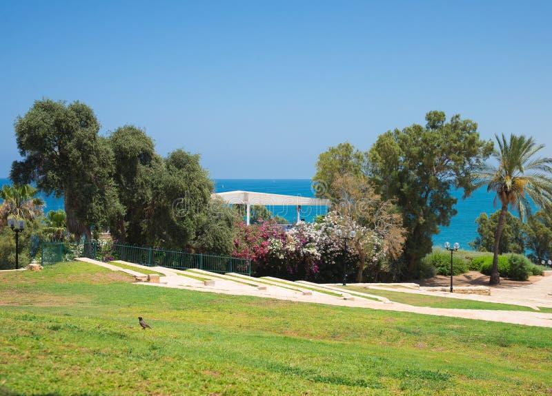 Park in Tel Aviv stock foto