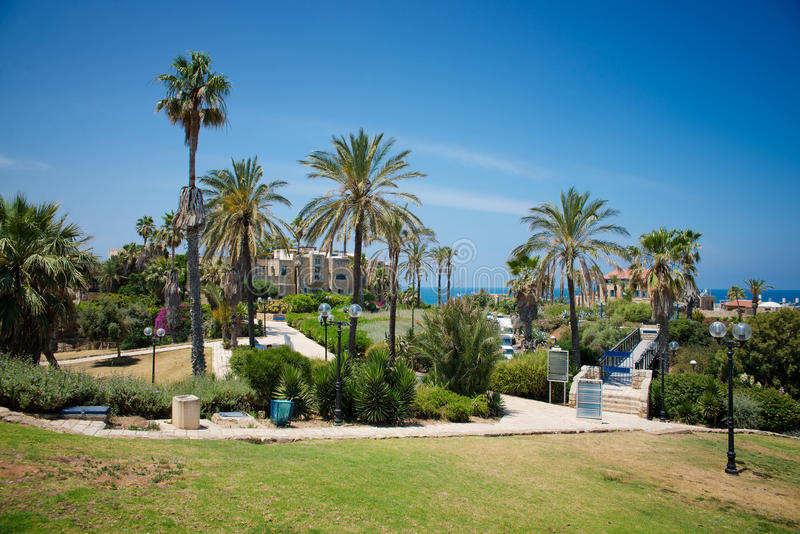 Park in Tel Aviv royalty-vrije stock fotografie