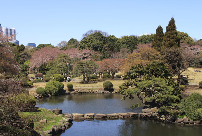 Download Park In Tokyo During Blossom Time Editorial Photo - Image: 25790476
