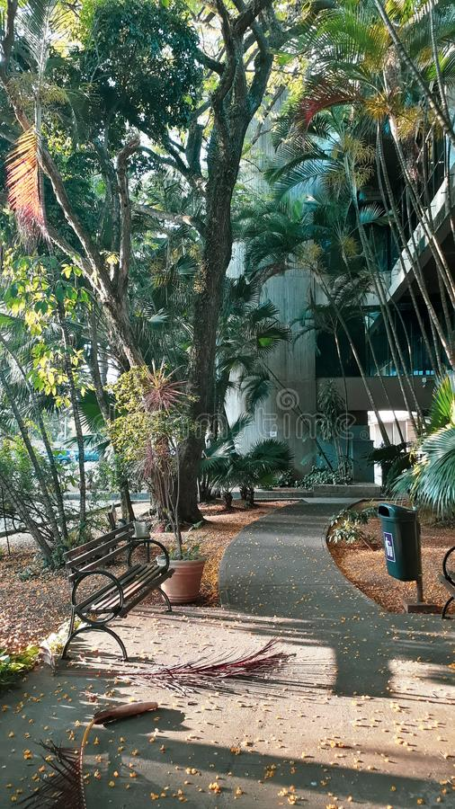 Park in town. Park in. Praa, banco, tree, arch, colorfull, colorido stock image