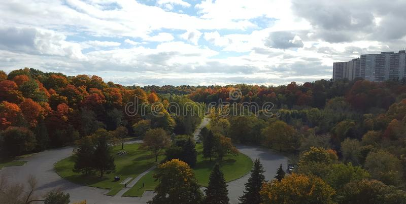 The park royalty free stock photography