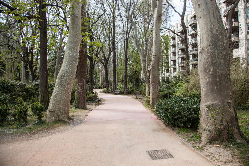 Park in Trieste. Park and a path in Trieste stock photography