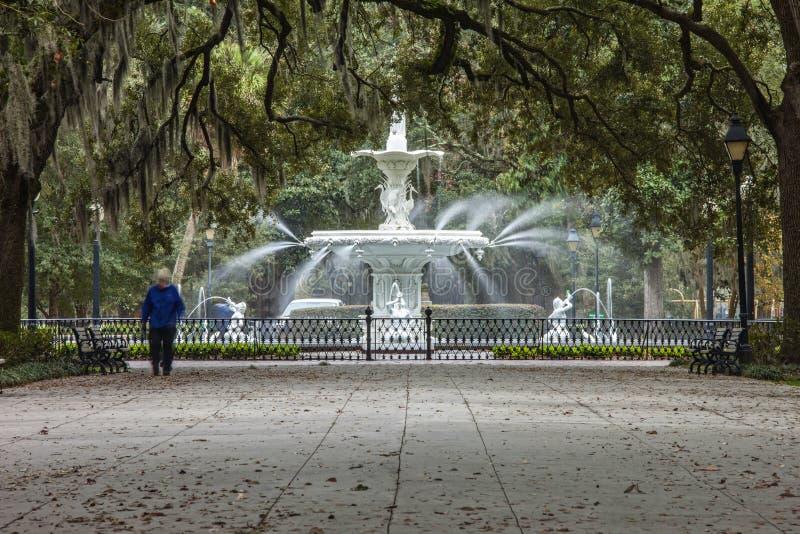 Park und Brunnen Forsyth lizenzfreie stockbilder