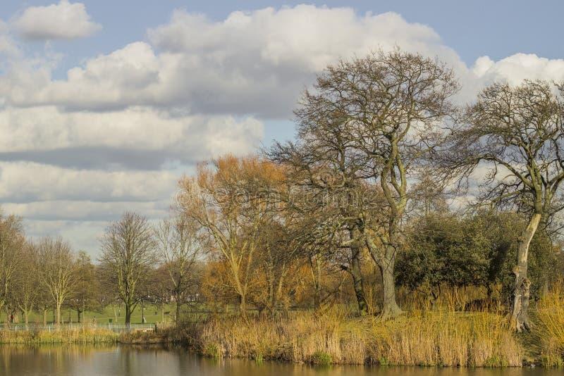 Park und Teich von Clapham allgemein in London lizenzfreies stockbild