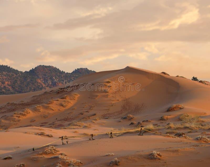 Park van de Staat van de Duinen van het Zand van het koraal het Roze, Utah stock afbeelding