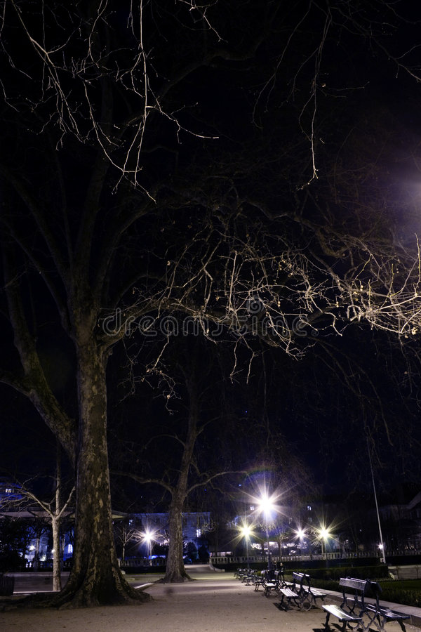 Download Park View at Night stock photo. Image of evening, post - 2159716