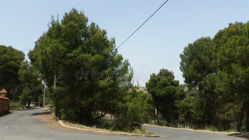 Park von tafoughalt, Marokko stockfoto