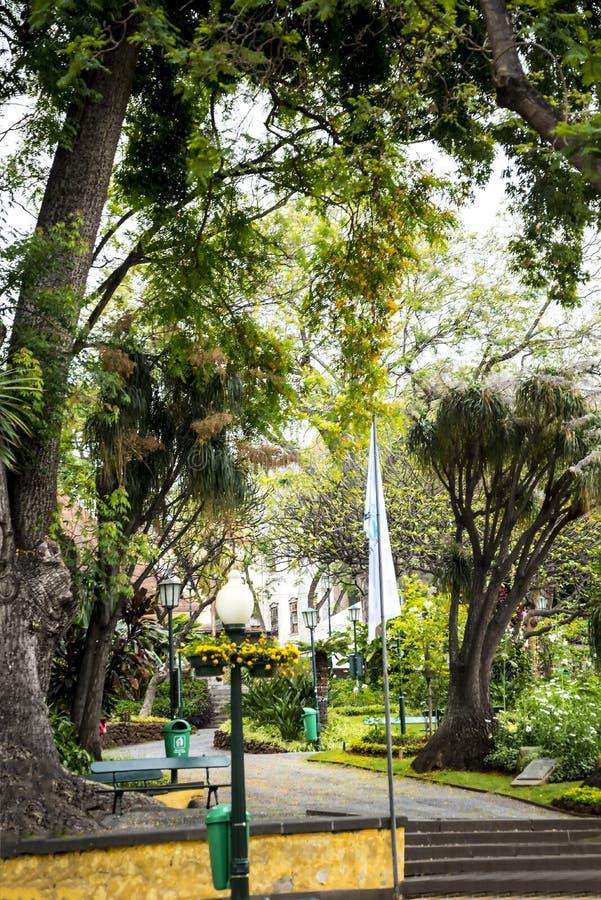 Park w Głównych zakupy ulicach w Funchal maderze Portugalia zdjęcia stock
