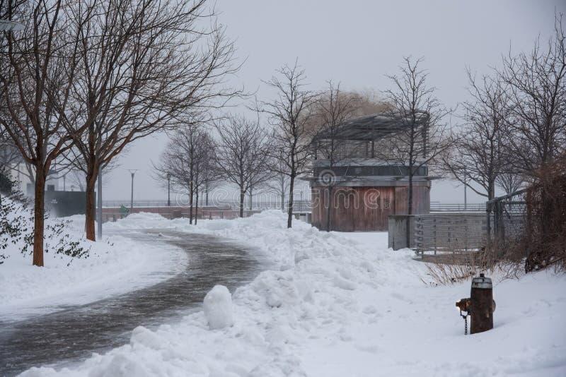 Park w Long Island mieście zakrywającym z śniegiem podczas zimy burzy Stella, Nowy Jork - fotografia royalty free